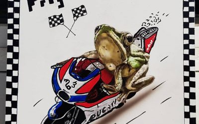 "Frog-R ""ready to race"""