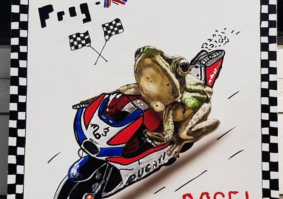 """Frog-R """"ready to race"""""""